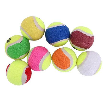 Мяч для собак (жесткий) в наборе 3 шт., фото 2