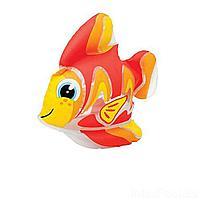 Надувная водная игрушка Intex 58590-F Тропическая рыбка Тедди, 24 х 24 см