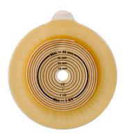 Пластина Alterna Waer Life с креплениями для пояса с вырезаемым отверстием 10-55 мм, с фланцевым соединением