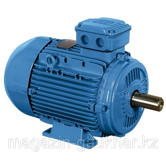Электрический двигатель 2Р 1,1 кВт
