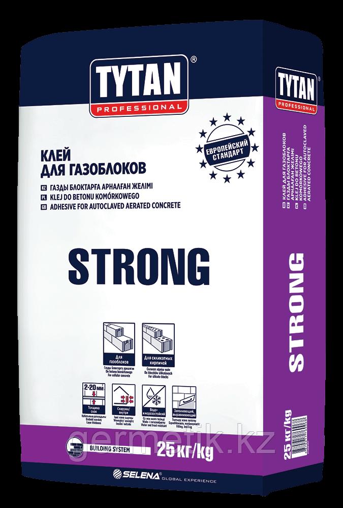 TYTAN Клей для газоблоков STRONG BS13