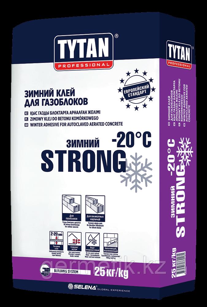 TYTAN Клей для газоблоков STRONG BS13 зимний