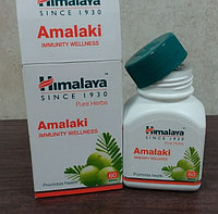 Амла, Амалаки (Amla, Amalaki) для иммунной системы
