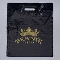 Пакет 'Браник', полиэтиленовый с вырубной ручкой, 40 х 50 см, 45 мкм (комплект из 50 шт.)