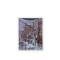 Обложка для документов, PAS3 «Зимний Петербург»