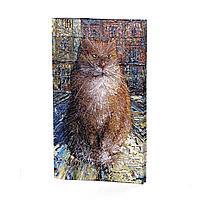 Портмоне PRS3 «Рыжий кот»