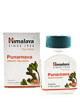 Пунарнава, Гималаи (Punarnava, Himalaya), 60 капсул, для почек, снимает отеки