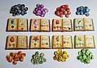 Настольная игра: Шарлатаны из Кведлинбурга Ведьмы-травницы, фото 3