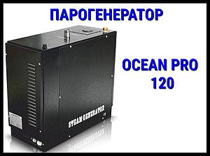 Парогенератор Ocean Pro 120 c автоматической промывкой