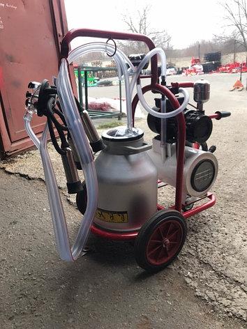Доильный аппарат на одну корову ARD-1100 Турция, фото 2