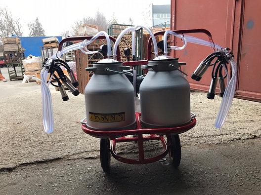 Доильный аппарат на две коровы ARD-12/22 Турция, фото 2