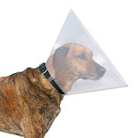 Защитный воротник для мелких и средних пород собак - 28-33 см