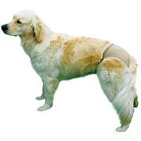 Бежевые защитные эластичные трусики для собак - 32-39 см
