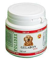 Препарат Gelabon Plus при заболеваниях опорно-двигательного аппарата собак, Polidex - 150 табл.