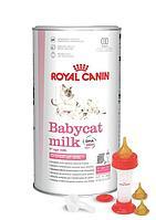 Заменитель молока Royal Canin BabyCat Milk для новорожденных котят, набор для вскармливания - 300 г