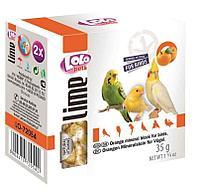 Минеральный камень для декоративных птиц с апельсином XL, Lolo pets - 190 гр