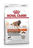 Корм Royal Canin Energy 4300 для собак, испытывающих кратковременные интенсивные нагрузки - 17 кг