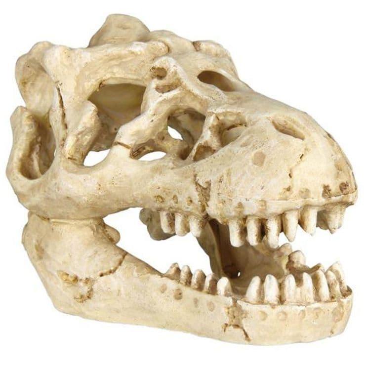 Черепа животных для декорации аквариума и террариума - 7-8 см
