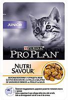 Корм Pro Plan Junior для котят (Курица в желе) - 85 г