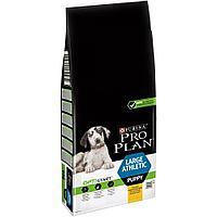Корм Pro Plan для щенков крупных пород с атлетическим телосложением (Курица, Рис) - 12 кг