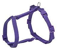 Premium шлейка с поводком для кошек, фиолетовая, XL: 33–57 cm/13 mm, 1.20 m