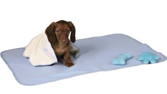 Набор Trixie для щенков, коврик, полотенце и 2 игрушки (Голубой)