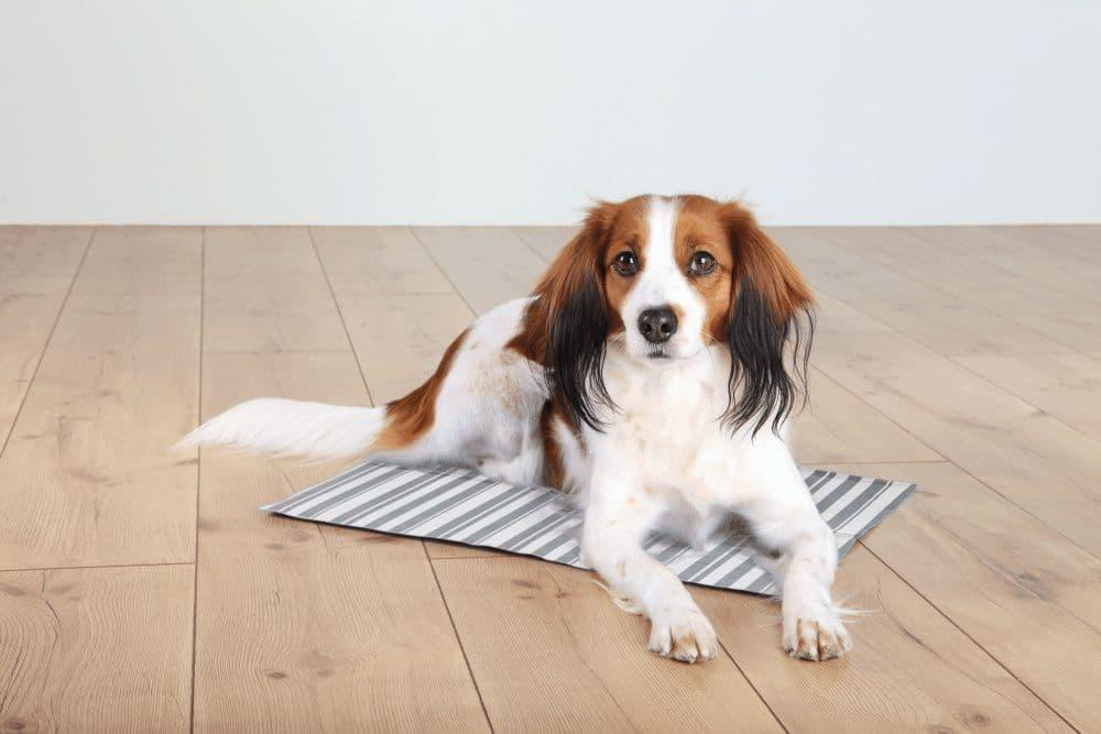 Подстилка охлаждающая Trixie для животных - 50×40 см