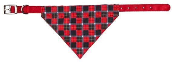 Красный нейлоновый ошейник с платочком для мелких пород - 19-24 см