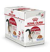 Корм Royal Canin Instinctive для кошек, высокая вкусовая привлекательность (в Желе) - 12 х 85 г