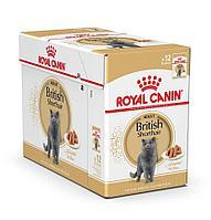 Корм Royal Canin British Shorthair Adult для взрослых Британских короткошерстных кошек - 12 x 85 г