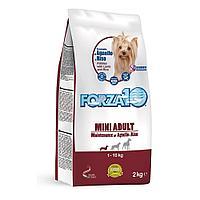 Корм Forza10 Mini Adult Maintenance для взрослых собак, мелких пород (Ягненок с Рисом) - 2 кг