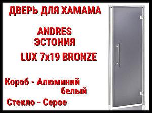 Дверь для турецкой бани Andres Lux Bronze (Серый)