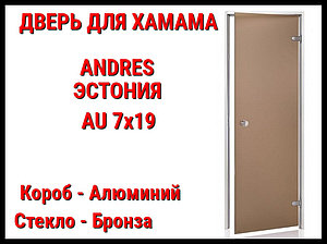 Дверь для турецкой бани Andres Au