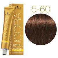 Краситель Igora Royal Absolutes 5-60 светло-коричневый шоколад 60 мл.Стойкая крем-краска для зрелых волос