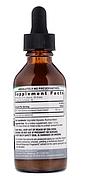 Nature's Answer, Расторопша, без спирта, 2000 мг, 2 жидких унции (60 мл), фото 2
