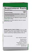 Nature's Answer, Фитогель алое-вера, 250 мг, 90 растительных капсул, фото 2