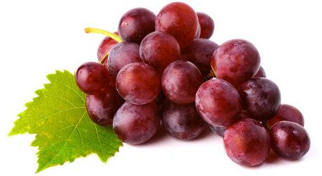 Виноград сорт Богатырский