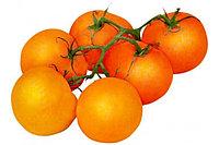 Помидоры черри оранжевые
