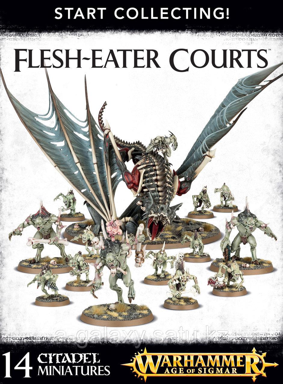 Start collecting! Flesh-Eater Courts (Начни собирать! Дворы пожирателей плоти) - фото 1