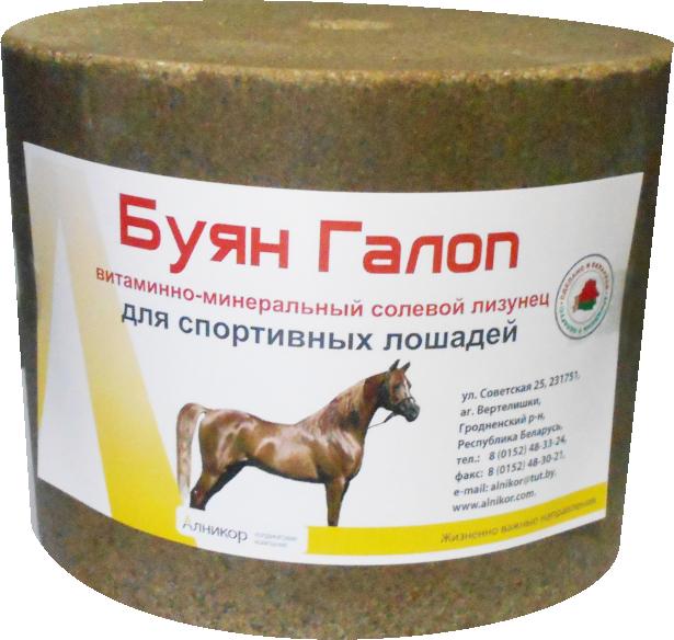 Лизунец солевой витаминно-минеральный для спортивных лошадей «Буян Галоп»