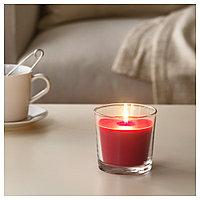 СИНЛИГ Ароматическая свеча в стакане, Красные садовые ягоды, красный, фото 1