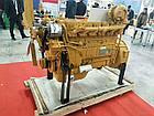 Weichai  WD10G220E23 рядный 6-цилиндровый дизельный двигатель, фото 3
