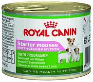 Корм паштет Royal Canin Starter Mousse M&B для беременных кормящих собак и щенков - 195 г