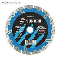 Диск алмазный отрезной TUNDRA, сегментный с защитными секторами, сухой рез, 180 х 22 мм