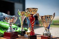 Спортивные награды (кубок и ме...