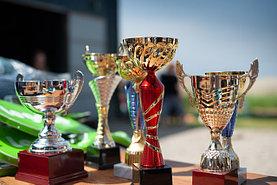 Спортивные награды (кубок и медаль, статуэтки)
