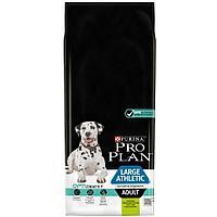 Pro Plan Adult Large Athletic Sensitive Digestion, Про План для взрослых собак круп. пород с ягненок, рис 14кг