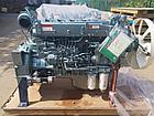 CNHTC Sinotruk WD615.87 рядный 6-цилиндровый дизельный двигатель для HOWO ZZ3251 / ZZ3252, фото 2