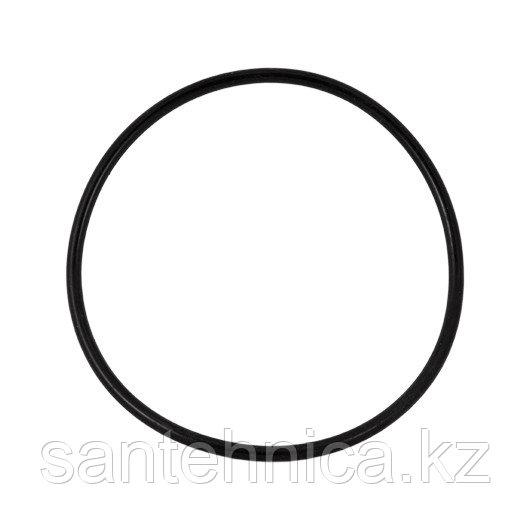 Уплотнительное резиновое кольцо для корпусов серии WF-HOT-10