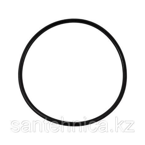 Уплотнительное резиновое кольцо для корпусов серии WF-HOT-10, фото 2